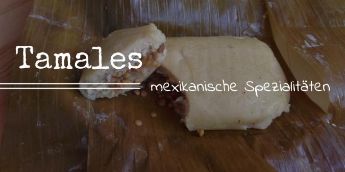 Mexikanische Spezialitäten vegane Tamales